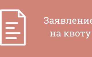 Анкета иностранного гражданина претендующего на выделение квоты
