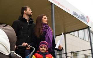 Должны ли многодетные семьи платить транспортный налог