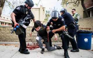 В систему государственных правоохранительных органов входят
