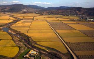 Вид целевого назначения земельного участка