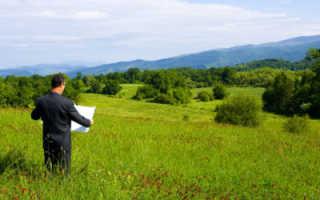 Предельный срок договора аренды земельного участка